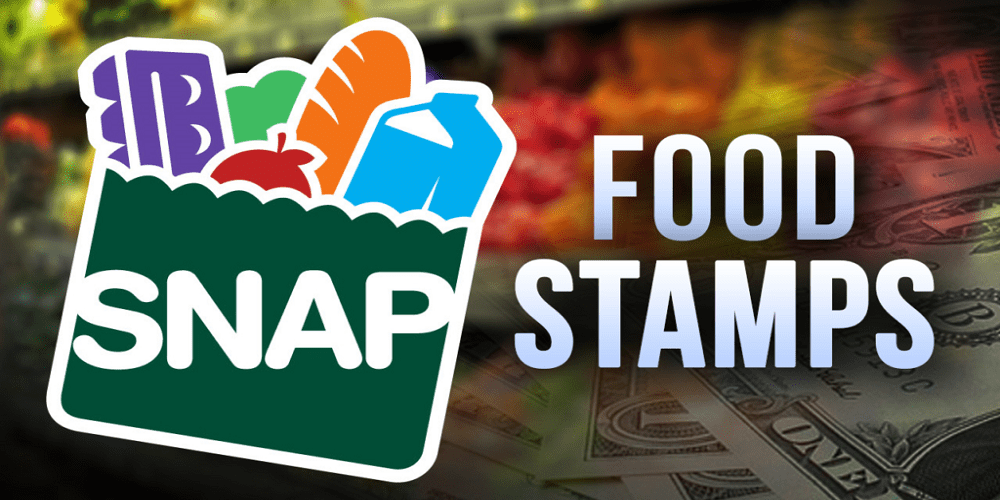 EBT Snap Food Stamps NYC
